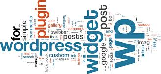 wordpress developers india silicon valley