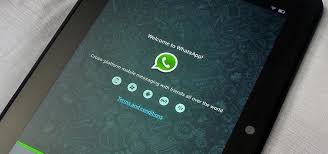 whatsapp install developers india